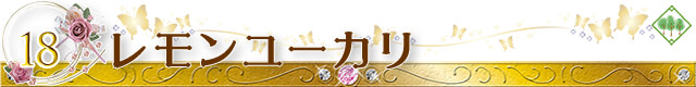【生活の木】アロマオイル おすすめ人気ランキング 第2位 ユーカリ・シトリオドラ(レモンユーカリ)
