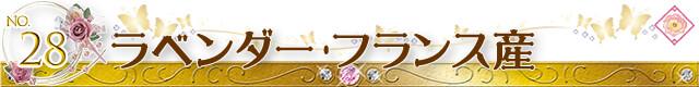 生活の木 福袋 アロマオイル ラベンダー・フランス産(真正ラベンダー)
