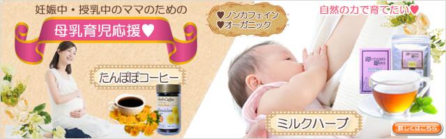 生活の木 マタニティ(妊娠・出産・育児/出産祝い)