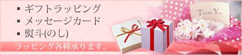 生活の木 マタニティ(妊娠・出産・育児/出産祝い) ギフトラッピング