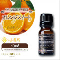 人気No.2 オレンジスイート